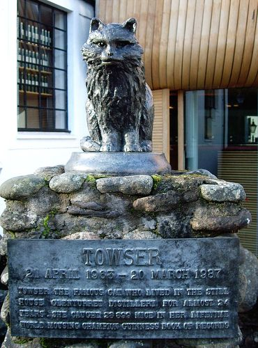 Memorial to Towser the Cat who worked and lived in a distillery in Crieff, Scotland, UK. In her 24 years of service, she caught 28,899 mice, earning a place in The Guinness Book of World Records.