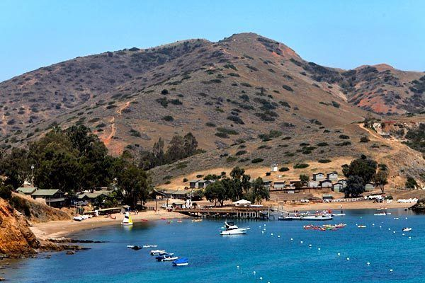 247 best images about catalina on pinterest avalon for Catalina bay