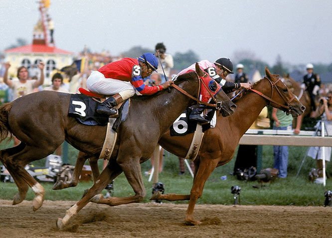 Alydar! Yes, this picture shows Affirmed betting Alydar. These two horses had one of the most legendary rivalries in sports history. I was working in Louisville and was at the 1978 Kentucky Derby when Affirmed finished first and became the last horse to win the Triple Crown. Affirmed ended up beating Alydar in 7 of their 9 meetings but almost all of them were great, close races.