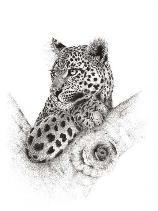 Artwork Leopard Spot on Gorgeous. Limited Edition by DaisyClaridge