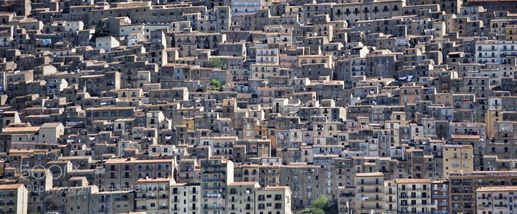 Popular on 500px : Problèmes de voisinage ? by PatrickBouvier1