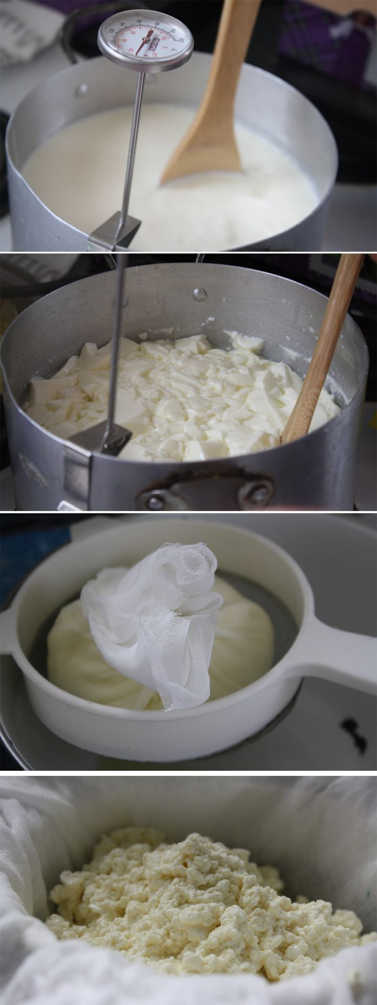 Ever thought about making your own mozzarella cheese? There are lots of DIY cheesemaking kits for you to make mozzarella at home. Here's what happened when I  tried to make mozzarella in my own kitchen