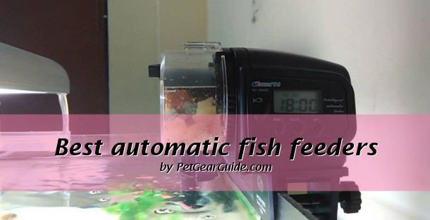 We review the best automatic fish feeders in the market so that you don't have to worry about your fish when your away. Our top pick is the Eheim battery operated auto fish feeder