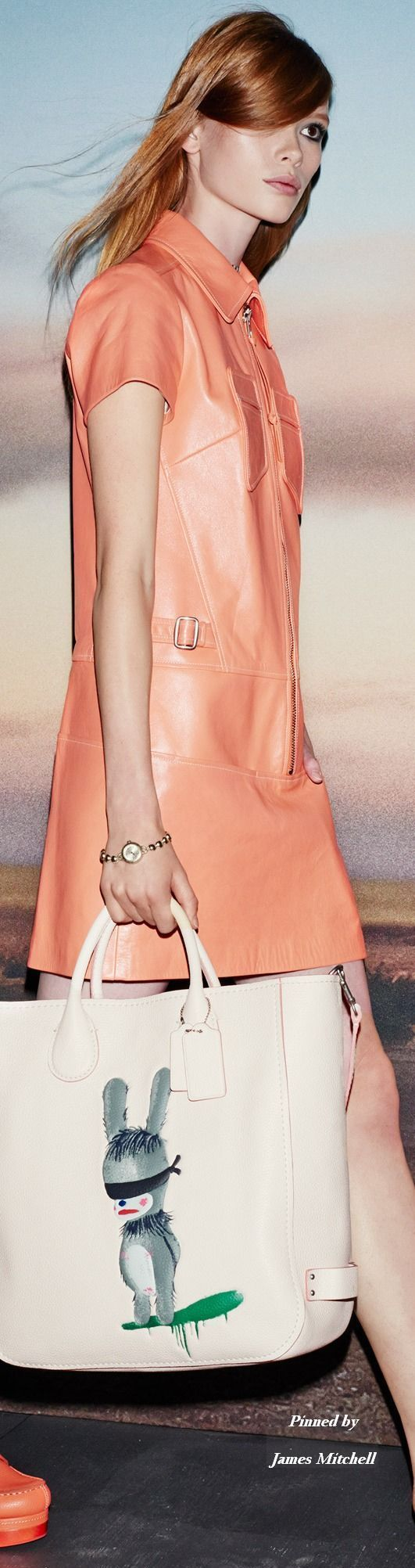 Coach Collection Spring 2015 Ready to Wear