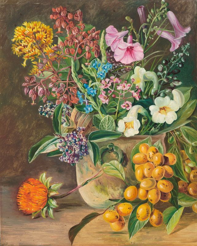 87. Group of Brazilian Forest Wild Flowers and Berries. Prints by Marianne North | Magnolia Box