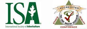 North Carolina Triad Tree Service and Lawn Service - Davey Tree : Professional Tree Service Since 1880