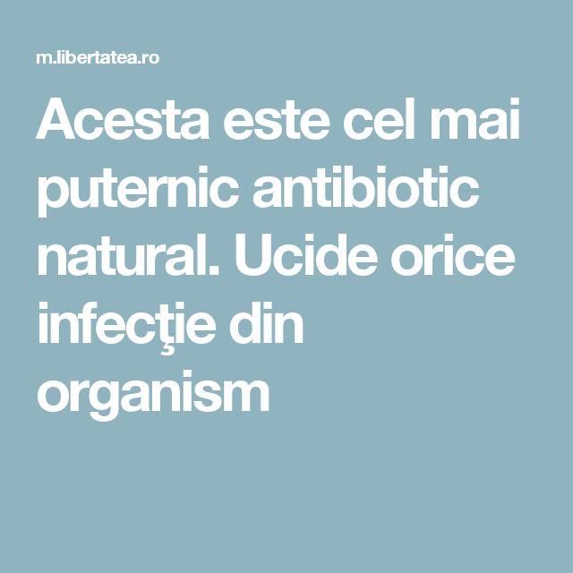 Acesta este cel mai puternic antibiotic natural. Ucide orice infecţie din organism