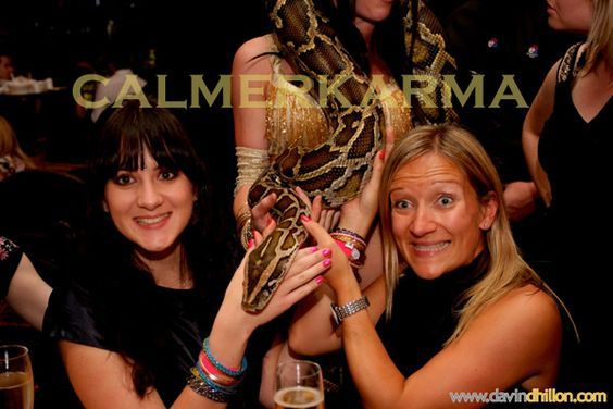 snake dancers to hire - guests love to interact with live snakes