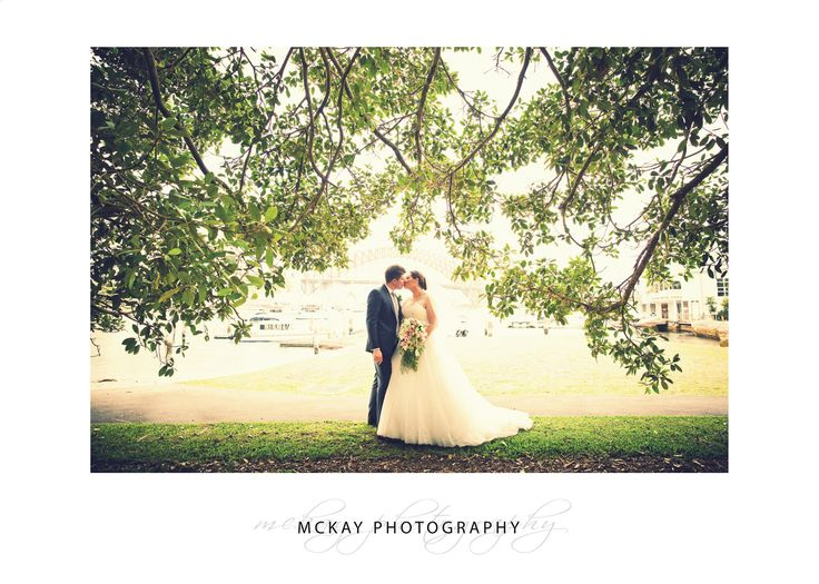 Under the fig tree at Lavender Bay #wedding #lavenderbay
