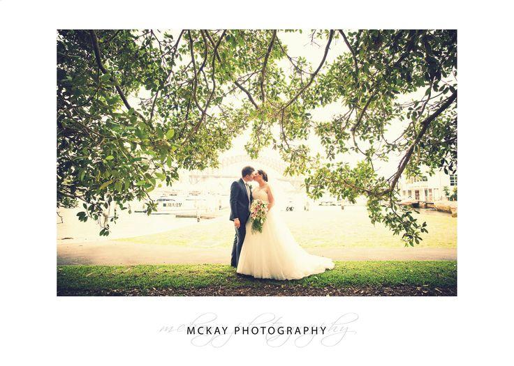 Under the fig tree at Lavender Bay #wedding #lavenderbay