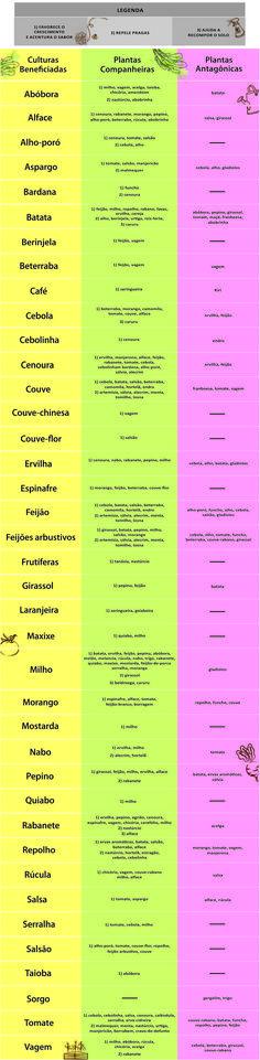 Tabela Epoca de Plantio                                                                                                                                                                                 Mais