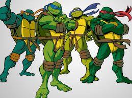 Turtle-Swag
