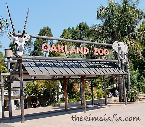 Visit the Oakland zoo.. up in the Oakland Hills. Focused on Conservation and Education.. #championsofhome #clevergirls