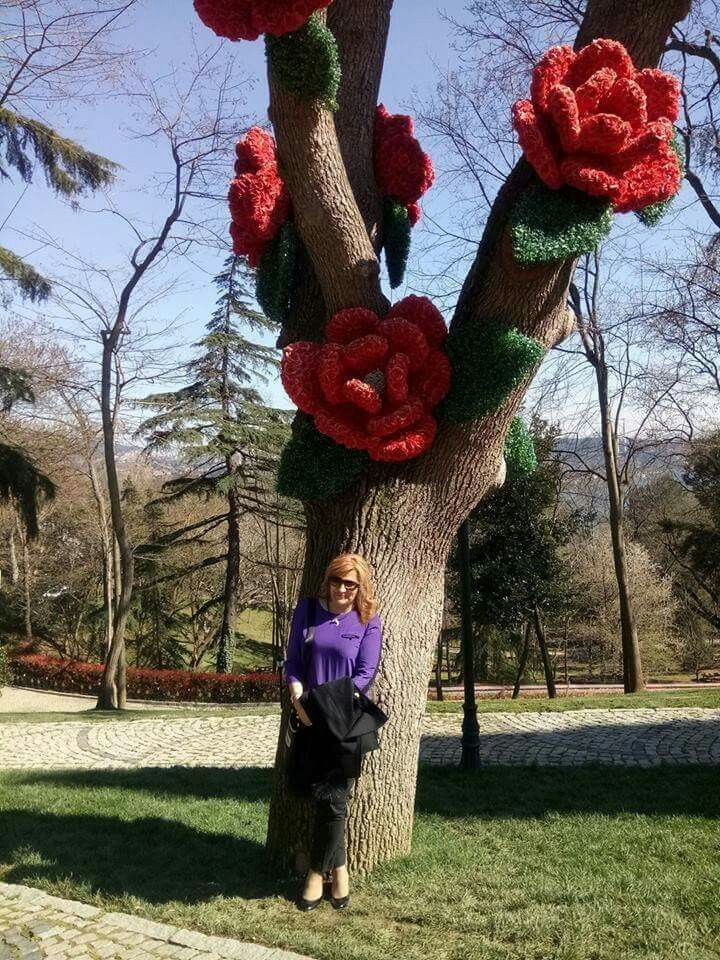 Emirgan korusu..Ağaçta yapma çiçekler..