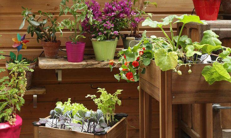 Jardinier des villes La nature se glisse partout. Vos petits espaces n'échappent pas à cette règle. Osez le potager sur votre balcon, investissez votre terrasse ! Cultivez vos tomates, salades, aromatiques… à volonté, y compris sur un espace très limité. De solutions colorées, étonnantes et vitaminées sont à votre portée.   Esprit Zen Le concept carré potager BYO BURGER est une solution pratique pour jardiner sur un espace réduit. Modulable, léger, et résistant par sa fabrication française…