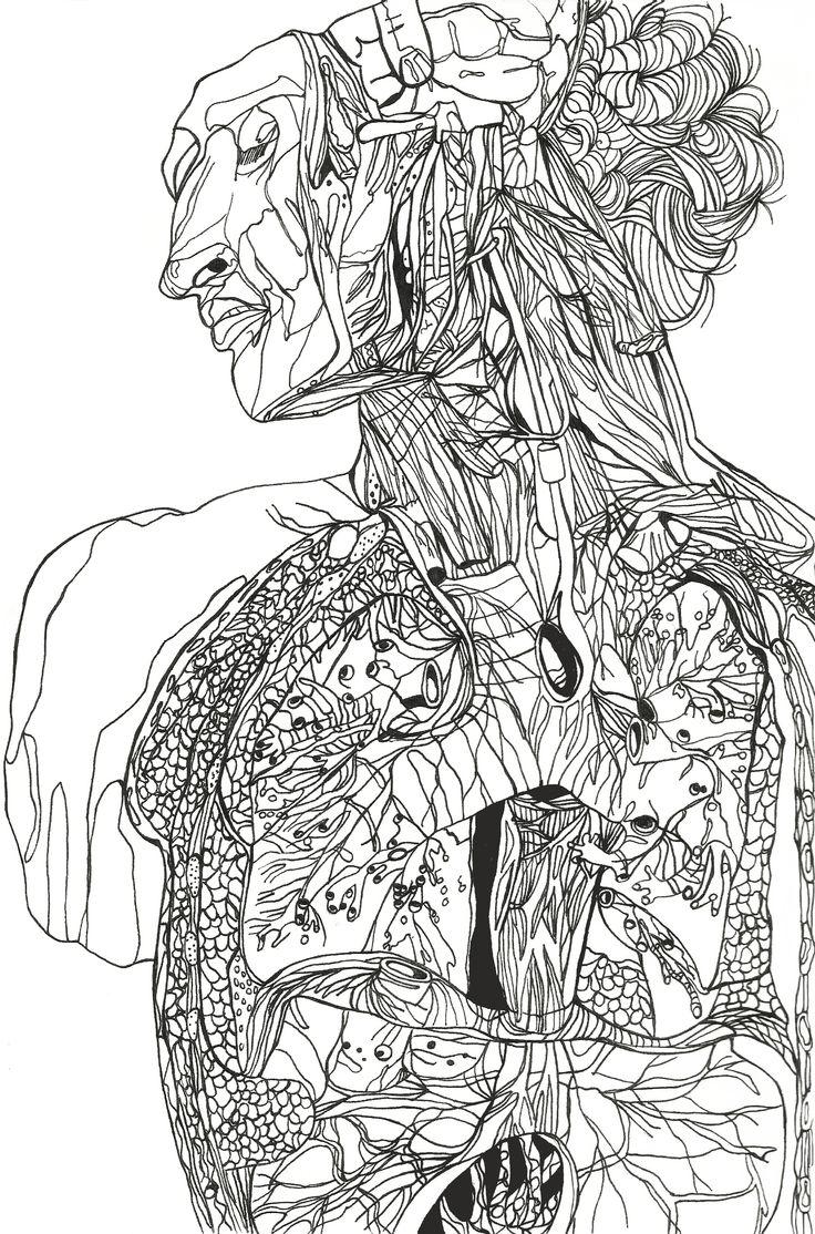 Anatomical Design 2013