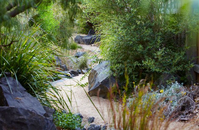 Ashburton, Victoria- Phillip Johnson landscapes.  Gravel pathway, and native plants.