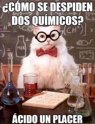 1798863_799768663371153_2127990548_n.jpg (403×527) #learn #spanish