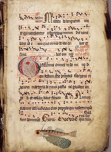 Gregorian Chant Leaf