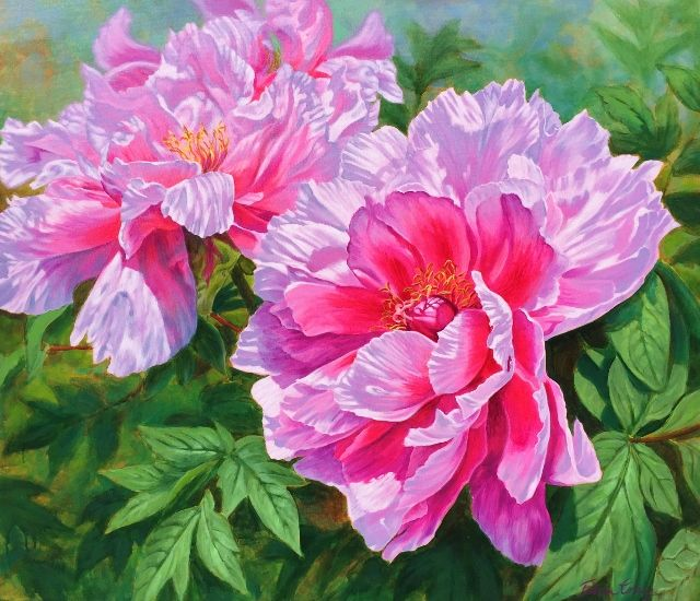 """Symphony of Peonies"" 92cm x 107cm. For more information please contact REDSEA Gallery on (07) 3162 2230 © Fiona Craig"