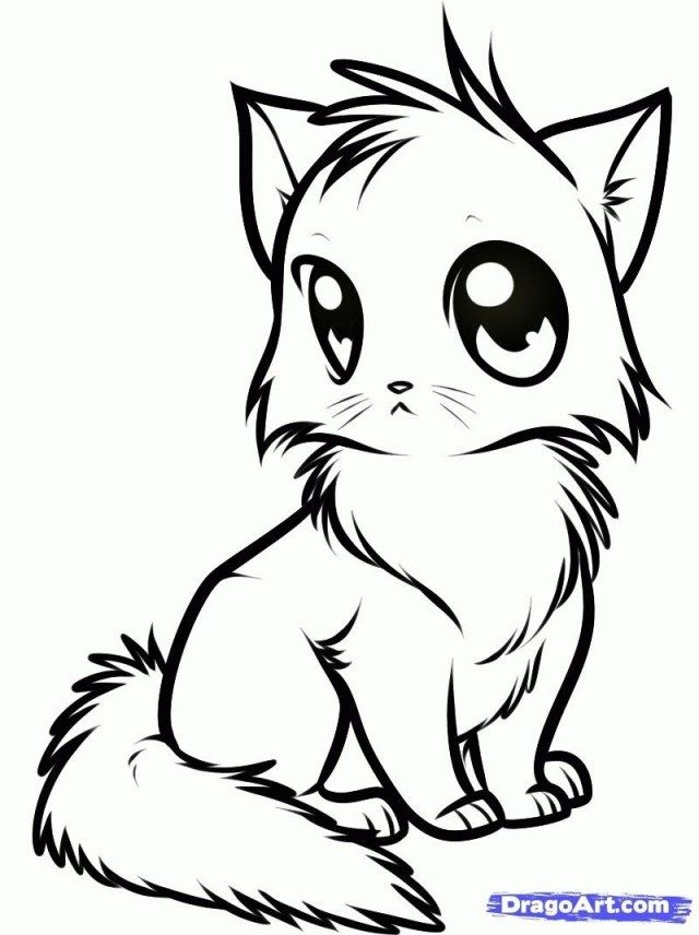 30 Inspiration Image Of Cute Animal Coloring Pages Albanysinsanity Com Animal Coloring Pages Cat Coloring Page Cute Anime Cat