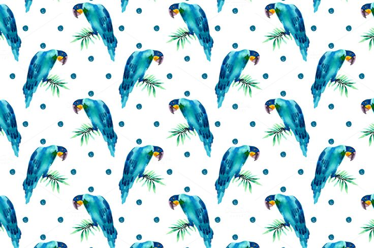 Tropical collection 2 by colibri on @creativemarket