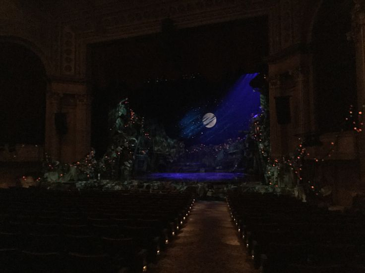 The cats stage