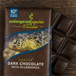 Dark Chocolate with Blueberries