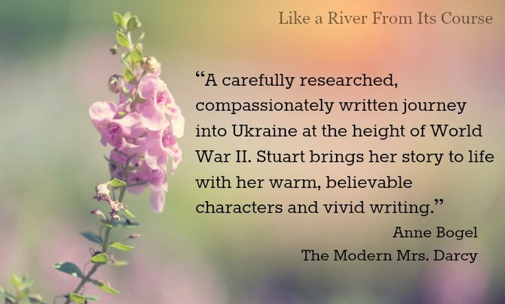 Anne Bogel blessed me with her kind words. #RiverNovel