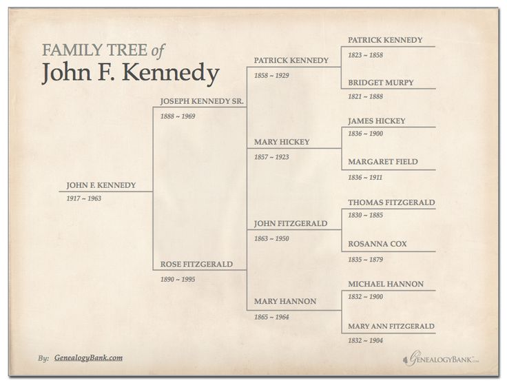 Free family tree template in powerpoint printables http for Templates for family tree charts