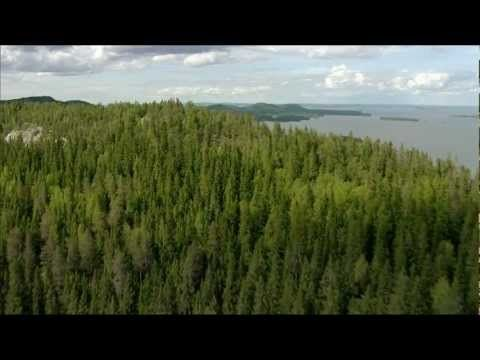 Stunning video from Finland, its nature and wonderful four seasons.  Music: Jean Sibelius - Finlandia.  #Sibelius #Finland #Music