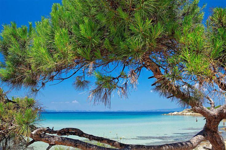 Karydi beach chalkidiki !!!