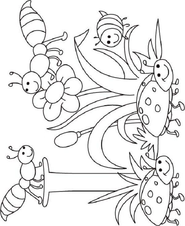 795 best images about coloring pages on Pinterest  Coloring
