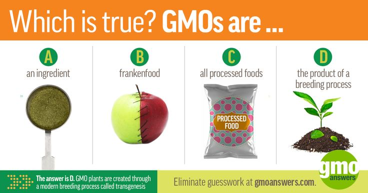 Nope, GMOs don't = frankenfood, ingredients or all processed foods. Learn how a GMO is made.
