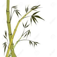 Resultado de imagen de tallos de bambu