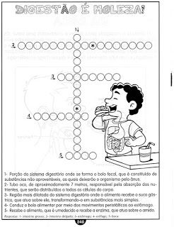 Ensinando Com Carinho Atividades De Ciencias Para 3º Atividade