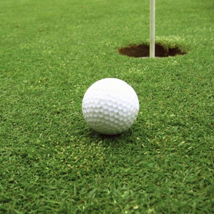 Vendiamo Agrostide Stolonifera di qualità professionale per campi da Golf e non solo...