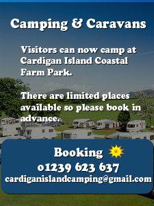 Cardigan Island Coastal Farm Park Camping, Gwbert