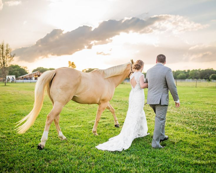 Rustic, Country Bride and Groom and Horse on Farm | Plant City Wedding Venue Wishing Well Barn | Tampa Wedding Photographer Rad Red Creative