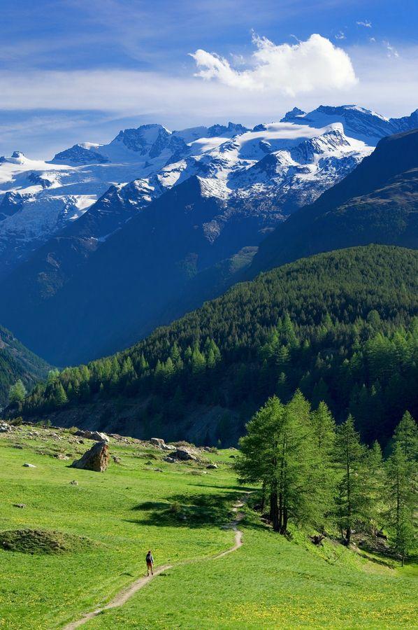Gran Paradiso National Park, Valle d'Aosta, Valle D'Aosta region Italy.