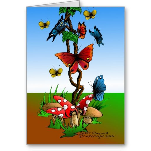 Butterfly Garden Greeting Cards by Peter Grayson