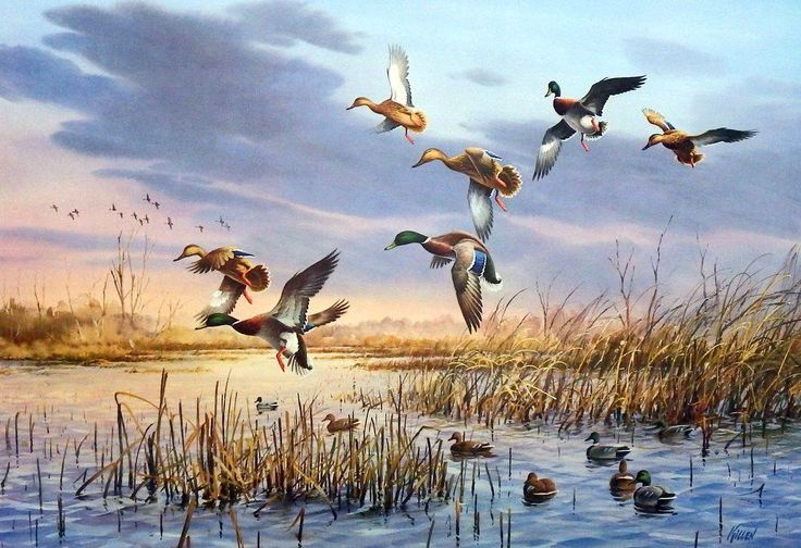 Ducks Unlimited 1984 Artist of the Year Signed Print Image SIze 26 x 18