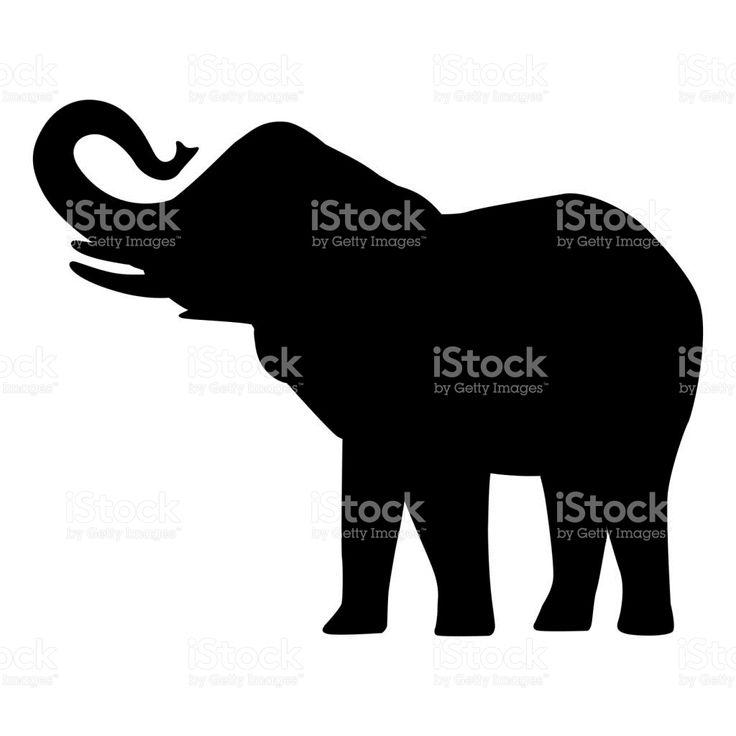 Elephant cartoon silhouette icon forest elephant  asian elephant african bush with large ears vector illustration isolated on white Сток Вектор Стоковая фотография