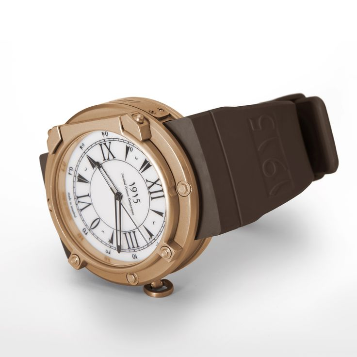 brown strap in bronze case