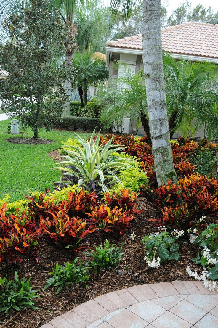 Crotons, wart ferns, false agaves, 'Odorata' begonias, and 'Gold · Corner LandscapingFlorida  LandscapingTropical ... - 106 Best Front Yard Florida Images On Pinterest Landscaping