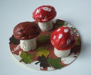 champignon : noix, bouchons en liège