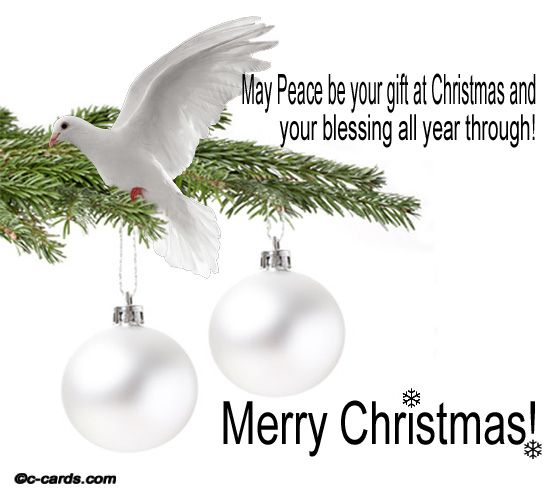 14 best palazzo morichelli daltemps san ginesio macerata le holiday greeting sent to me from my special friend esther fried beautiful message of hope and encouragement white dove offers insight of love and peace m4hsunfo