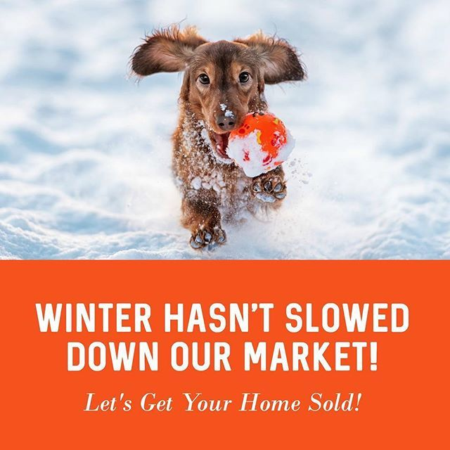 Thinking of selling your home?  We need listings!! Cheryl Henszey, PA, REALTOR with Coldwell Banker Residential Real Estate (850) 281-3239 #sellersmarket #sellersagent #sellyourhouse #listwithme #florida #floridahomes #realtor #realestate #results #realtorlife #resultsmatter #localrealtors - posted by Cheryl Henszey PA, Realtor https://www.instagram.com/cheryl.henszey.florida.realtor - See more Real Estate photos from Local Realtors at https://LocalRealtors.com
