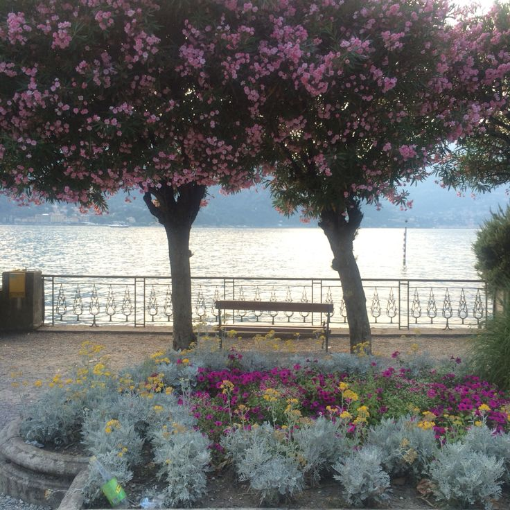 Bellaggio - Lake Como