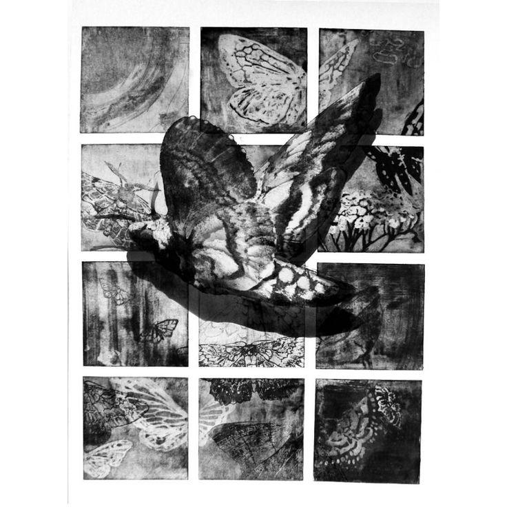 #ćmy #grafika #grafikawarsztatowa #moth #fly #akwatinta #akwaforta #etching #aquatint #engraving #art #traditionalart #love #loveart #przegladinstagrama #blackandwhite
